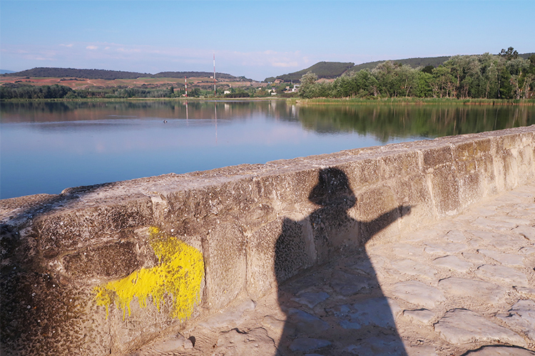 カミーノブログ スペイン巡礼 フランス人の道