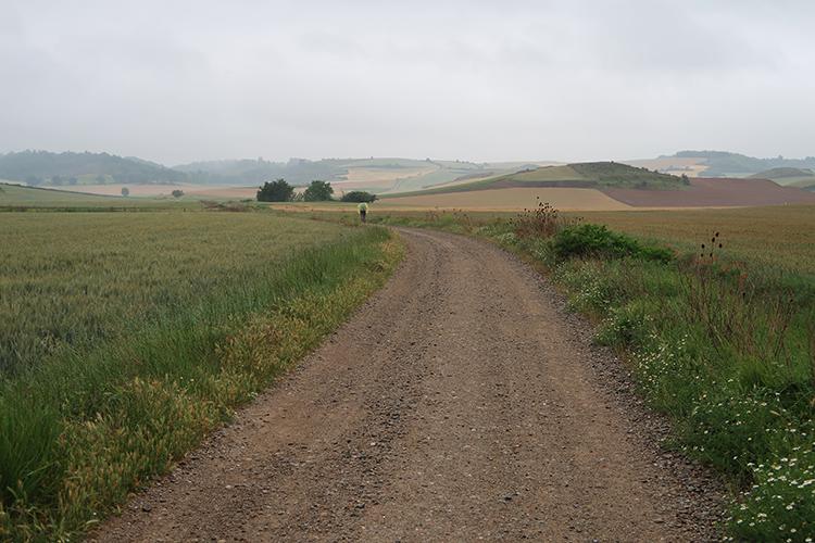 カミーノブログ スペイン巡礼 景色 写真