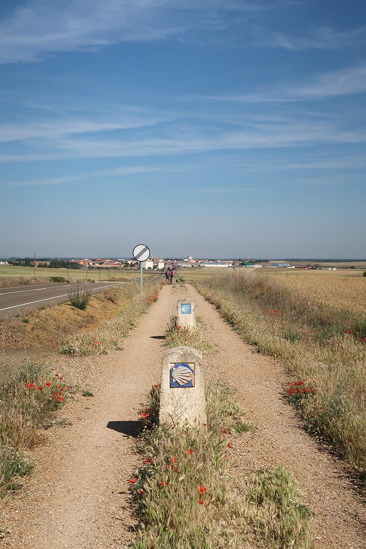 カミーノブログ スペイン フランス人の道