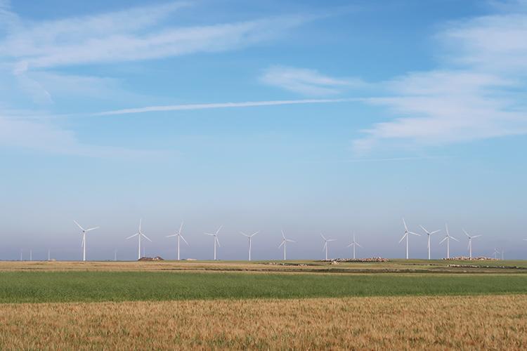 カミーノ 一番美しい道 景色 麦畑 風車 飛行機雲