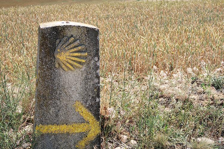 単調な一本道 17km カミーノ