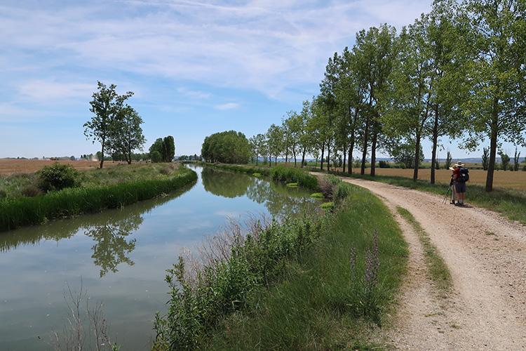 カミーノ 星の道 カスティージャ運河