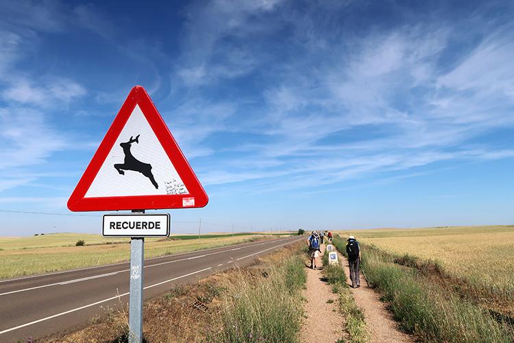 カミーノブログ スペイン フランス人の道 標識