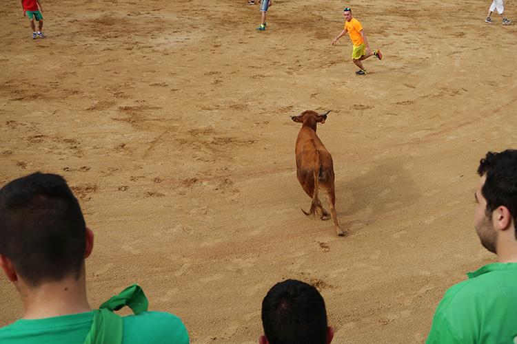 サンフェルミン 牛追い祭り サアグーン 闘牛場