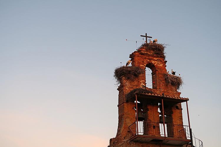 カミーノ 朝焼け スペイン巡礼