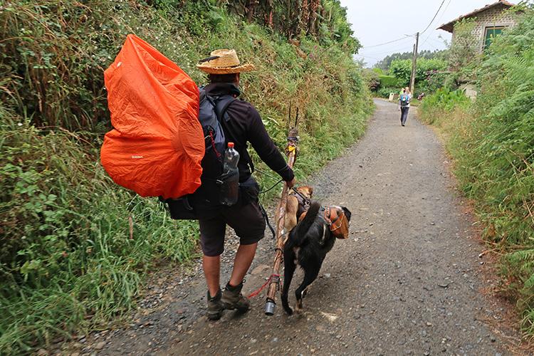 スペイン巡礼 犬連れ 巡礼犬