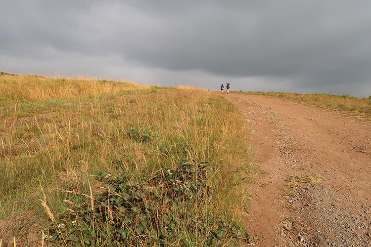 残り100km カミーノブログ