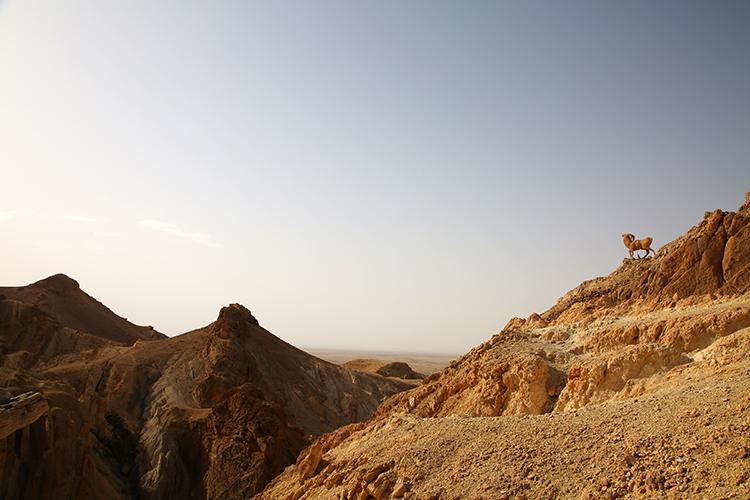 タメルザ渓谷 チュニジア
