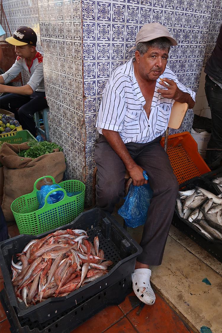 チュニジア ジェルバ島 魚市場