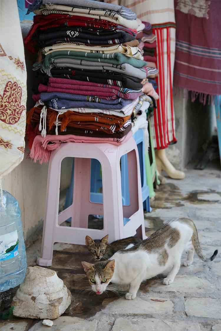 チュニジア ジェルバ島 フームスーク