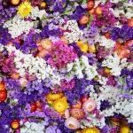 花贈りのススメ