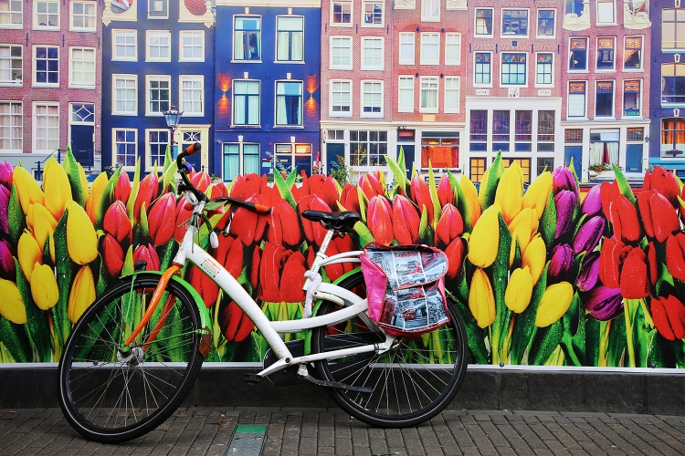 アムステルダム 観光 オランダ