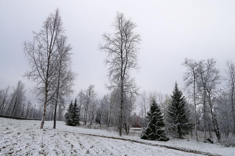 キルナ オーロラ 雪 冬