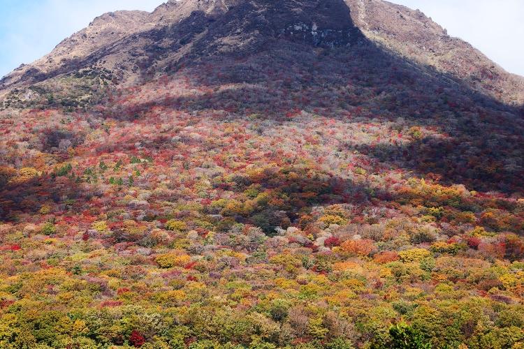 紅葉 由布岳 大分 登山