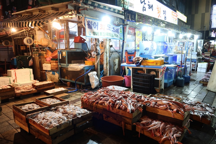 釜山 グルメ旅 食べ歩き 海鮮市場