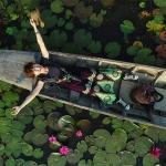 インスタ映え必至!蓮の花池でドローン撮影